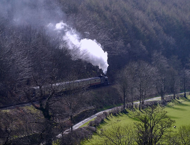 Llangollen Steam Railway at Horseshoe Falls (Wales) © Maria Nunzia @Varvera