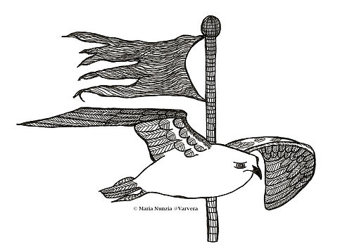 Chapter illustration Field Notes From The Edge Common gull