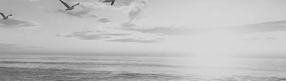 beach-1852945_1920_edited_edited.jpg