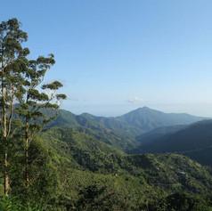 Blue Mountain Peak Hike