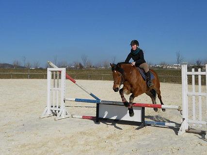 cath a poney.jpg