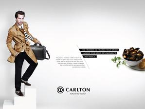 New product launch, Carlton