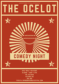 Ocelot Com Night.jpg