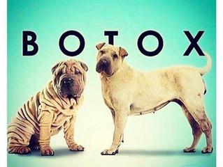 Botox em Sorocaba- Quanto custa para aplicar Botox? Toxina Botulínica em Sorocaba.