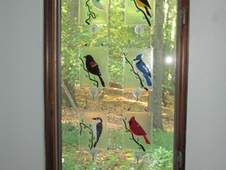 Bird Portraits in Fused Glass