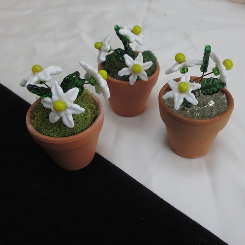 Mini Flower Pot with White and Yellow Flowers