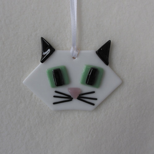 Cat - White Face and Black Ears