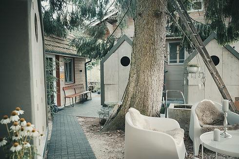 Gaumenschmaus im Vogelhaus cam&more