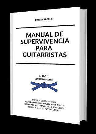 Manual de Supervivencia Para Guitarrista