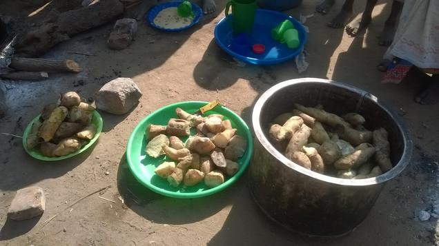 Cassava and potatoes