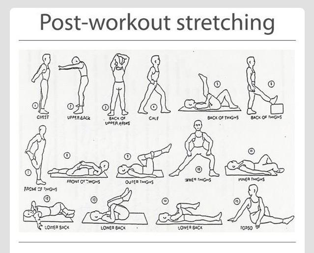 Brazilian Jiu Jitsu Stretching