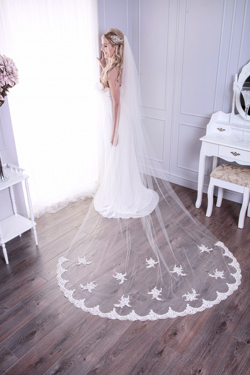 cathedral length lace bottom veil