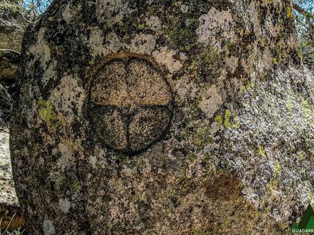 Descubriendo los bosques de Peguerinos (Ávila)