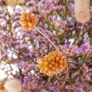 Bouquet de fleurs sauvages - détail 1