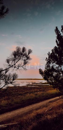 La Baie de Bonne Anse (2)