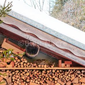 Réserve de bois