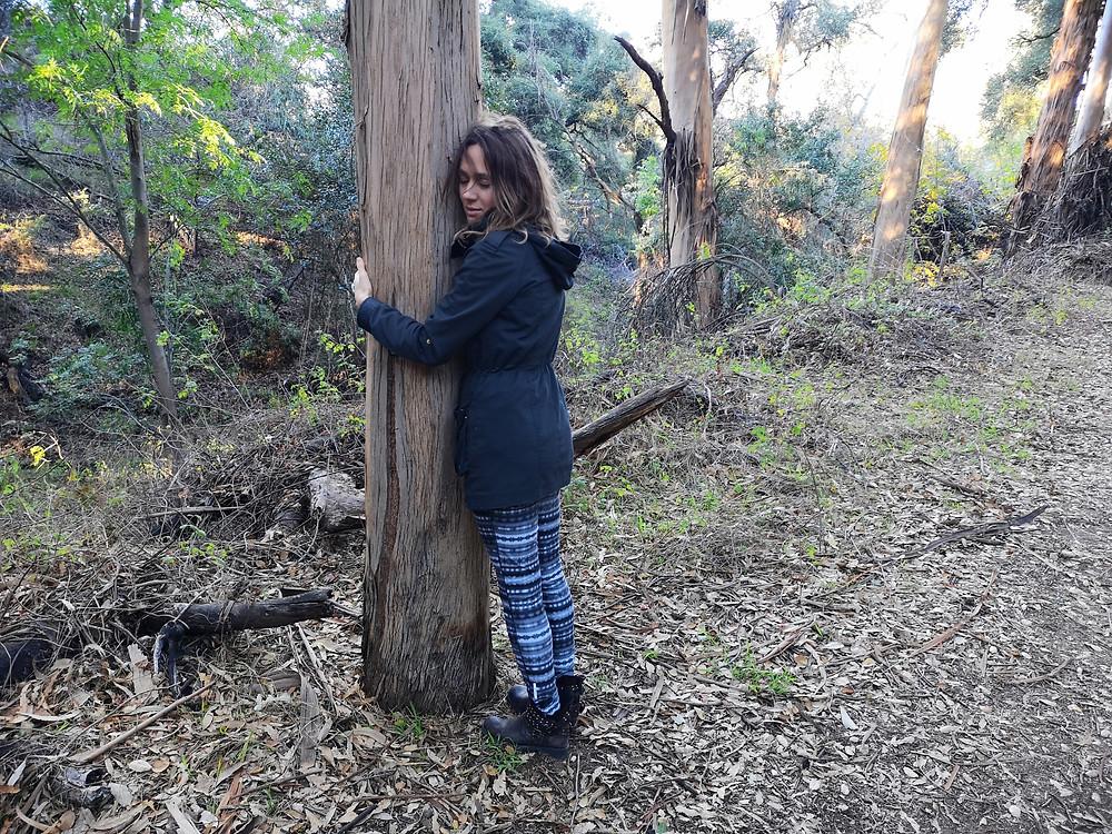 Tree hug, my tree, tree, nature