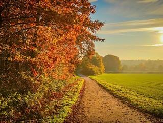 10 - Goldener Herbst/Goldenes Zeitalter