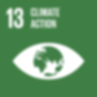 13.2. INTEGRATE CLIMATE CHANGE MEASURES INTO POLICIES AND PLANNING Integrate climate change measures into national policies, strategies and planning.