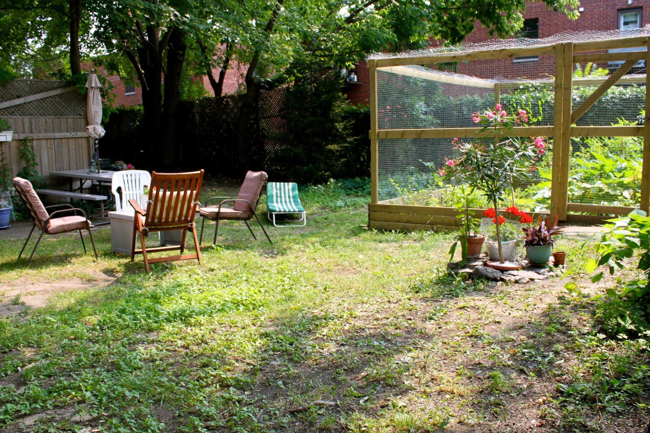 backyard8.jpg
