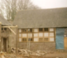 Oak Restoration.jpg