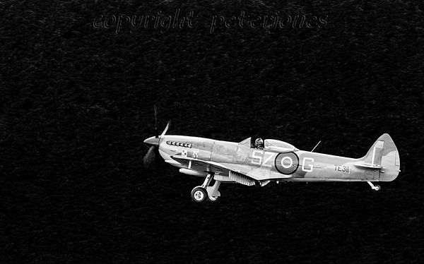 spitfire TE311 landing.jpg