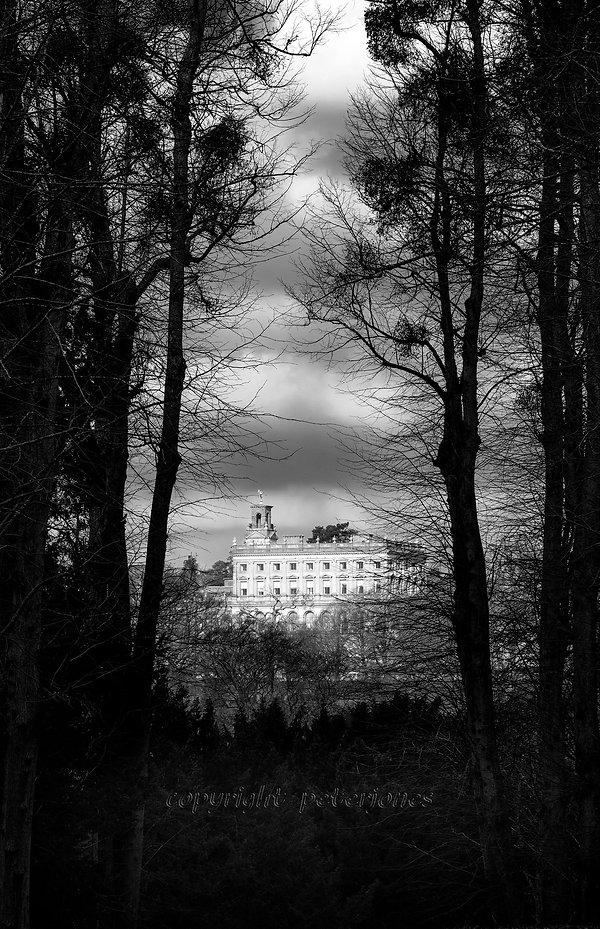 black and white landscape_II.jpg
