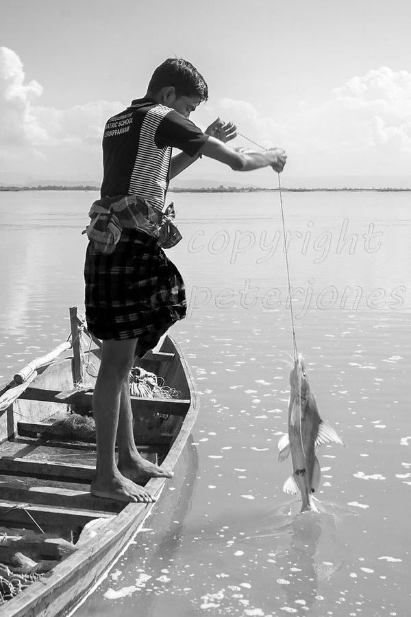 River Brahmaputra Assam India004.jpg