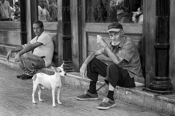 three from Havana.jpg