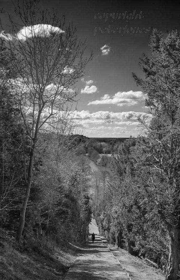 black and white landscape.jpg