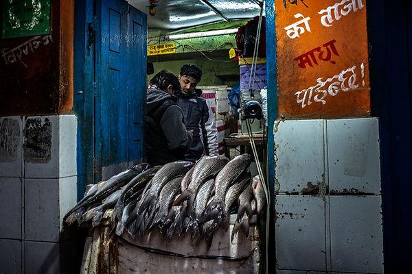 kathmandu fish shop.jpg
