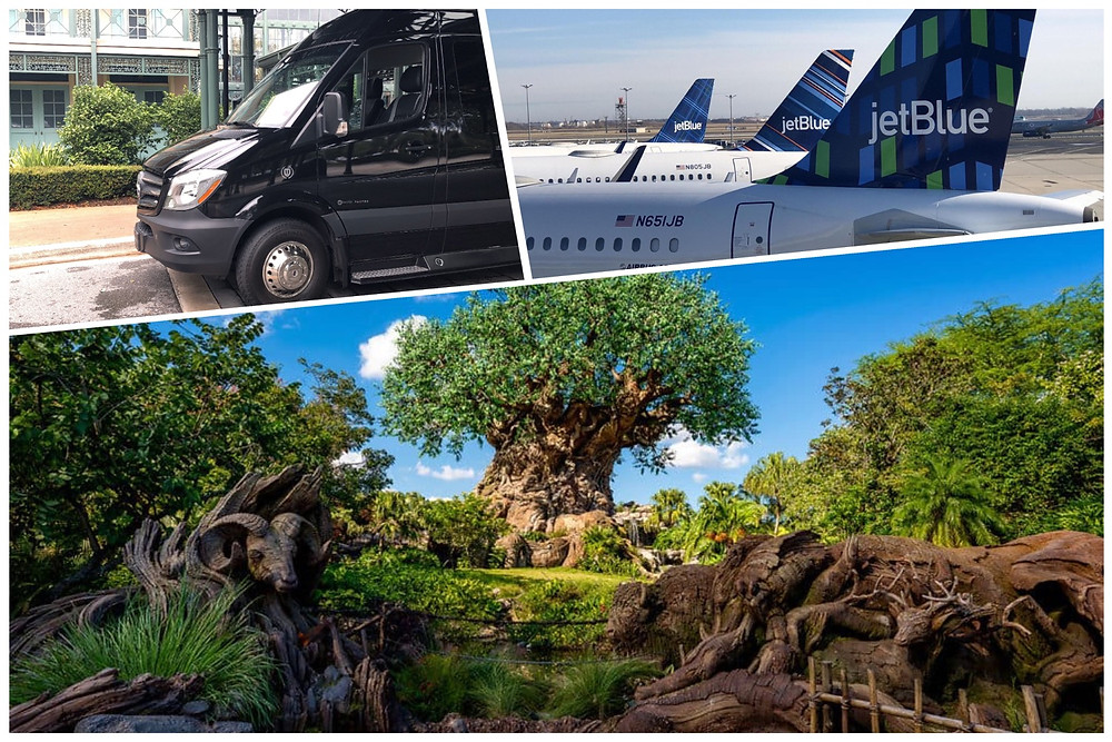 Orlando Airport Transportation To Disney's Animal Kingdom