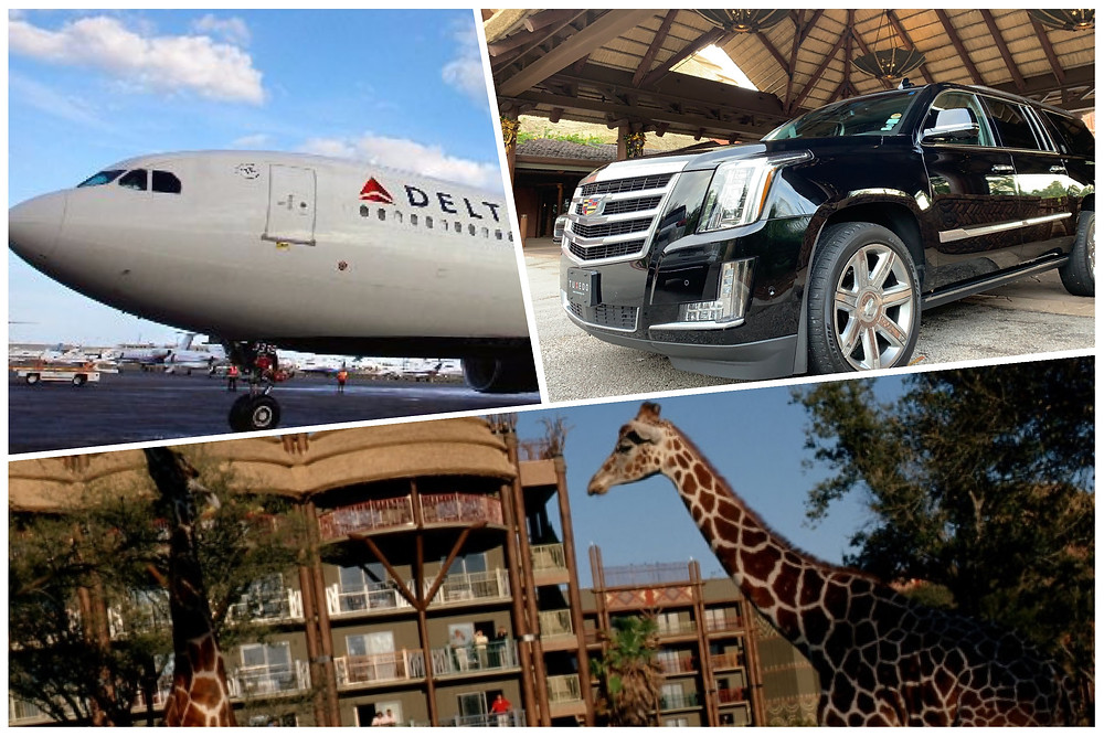 Car Service From MCO To Animal Kingdom Lodge