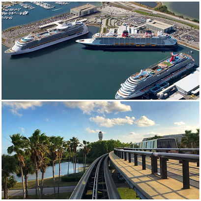 TRANSPORTATION FROM PORT CANAVERAL TO DISNEY'S ANIMAL KINGDOM LODGE