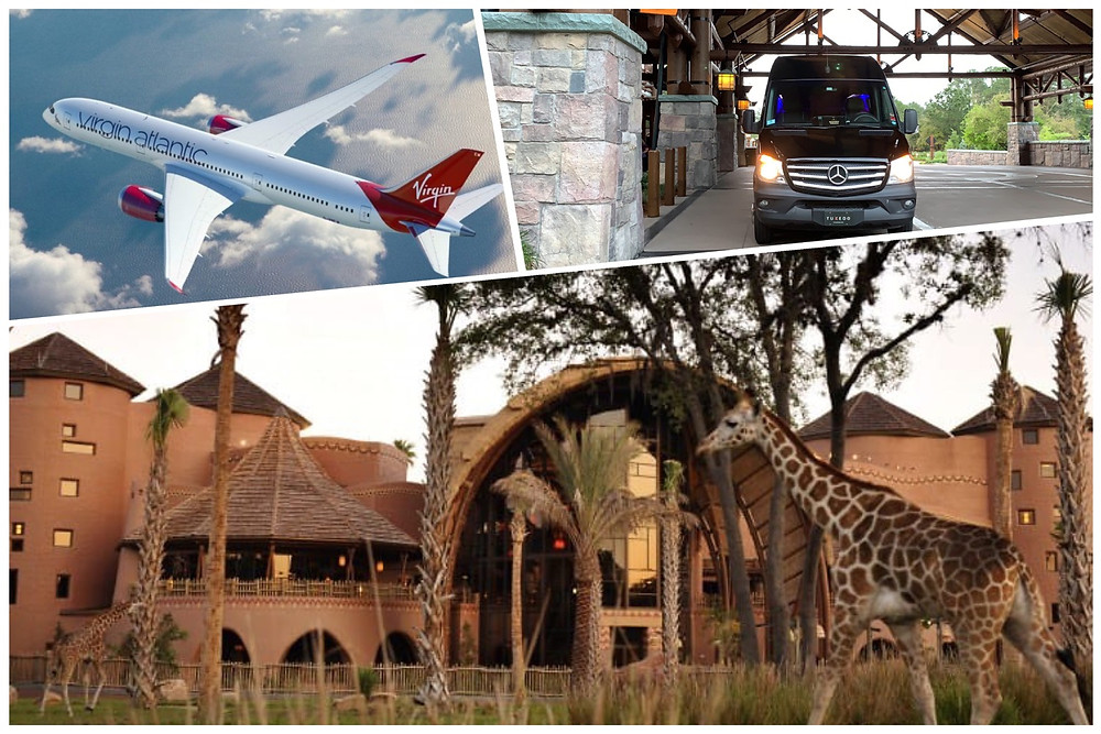 Airport Transportation From MCO To Disney's Animal Kingdom