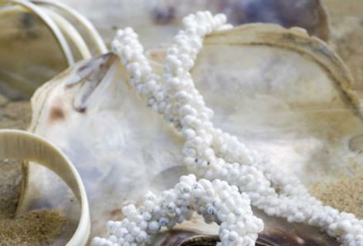 MONGO SHELL JEWELLERY from