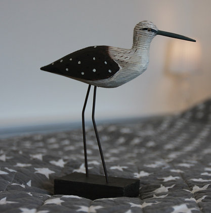 SPOTTED WING SHOREBIRD