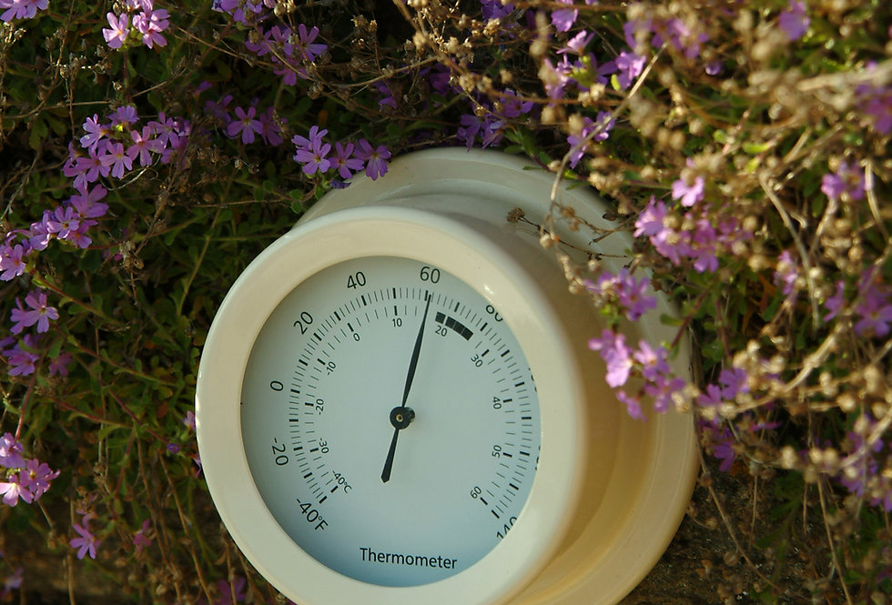 CLAY THERMOMETER