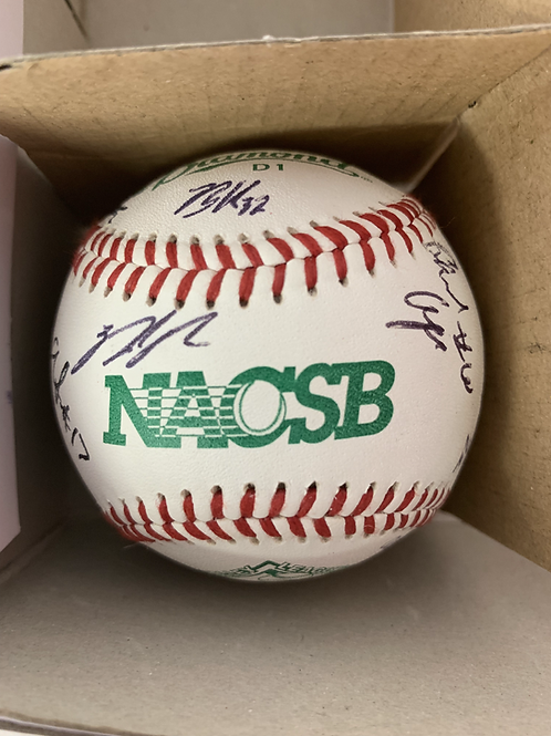 2019 StauntonBraves Team Signed Baseball