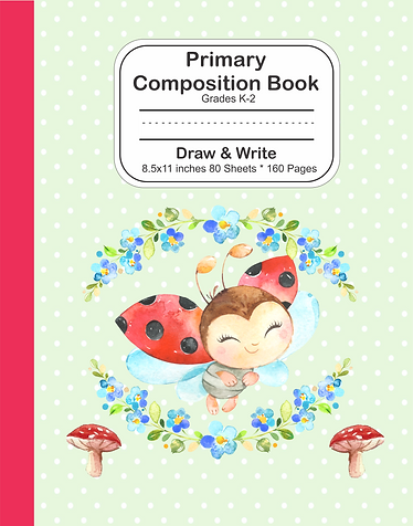 Draw and write notebook ladybug