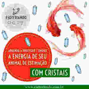 Limpeza energética dos PETS com cristais.