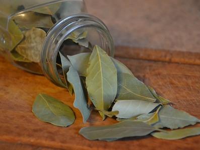Benzimento com folhas de Louro
