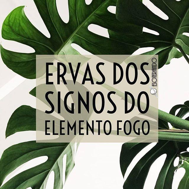 Signos do elemento fogo ÁRIES / LEÃO /SAGITÁRIO