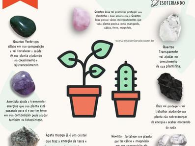 Cristais em vasos e seus poderes para o crescimento das plantas