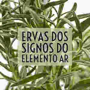 Signos do elemento ar GÊMEOS / LIBRA / AQUÁRIO