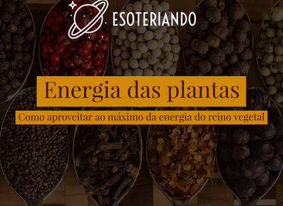 Energia das Plantas - Como aproveitar ao máximo a energia do Reino vegetal.