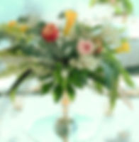 DSC_0030%20(2)_edited.jpg
