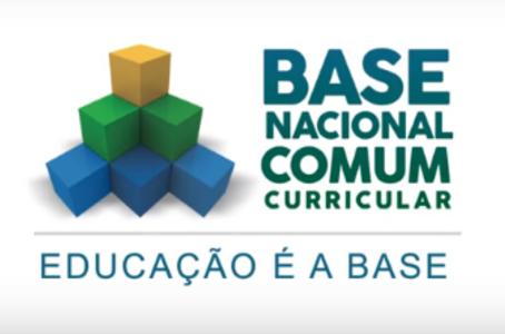 BNCC e a Educação Inclusiva: o papel das habilidades e competências