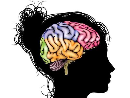 Existe um cérebro feminino?
