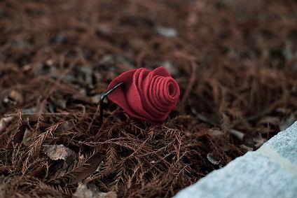 Rose-Memorial-24.jpg